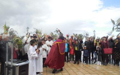 14/4/2019 Domenica delle Palme – Santuario San Francesco di Paola